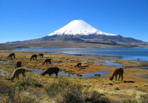 vulcao-Parinacota_chile